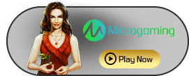 microgaming-active
